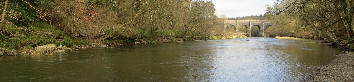 The River Torridge Fishery Association