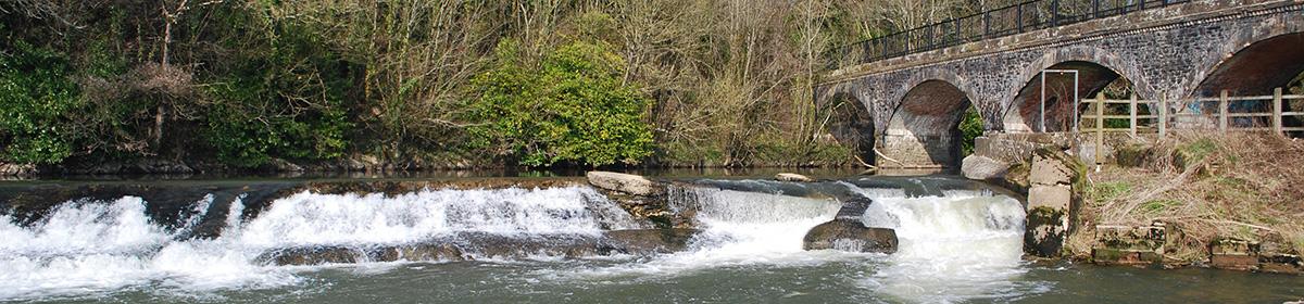 The River Torridge Fishery Association